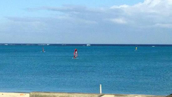 飛魚と 競う帆の背に 波しぶき